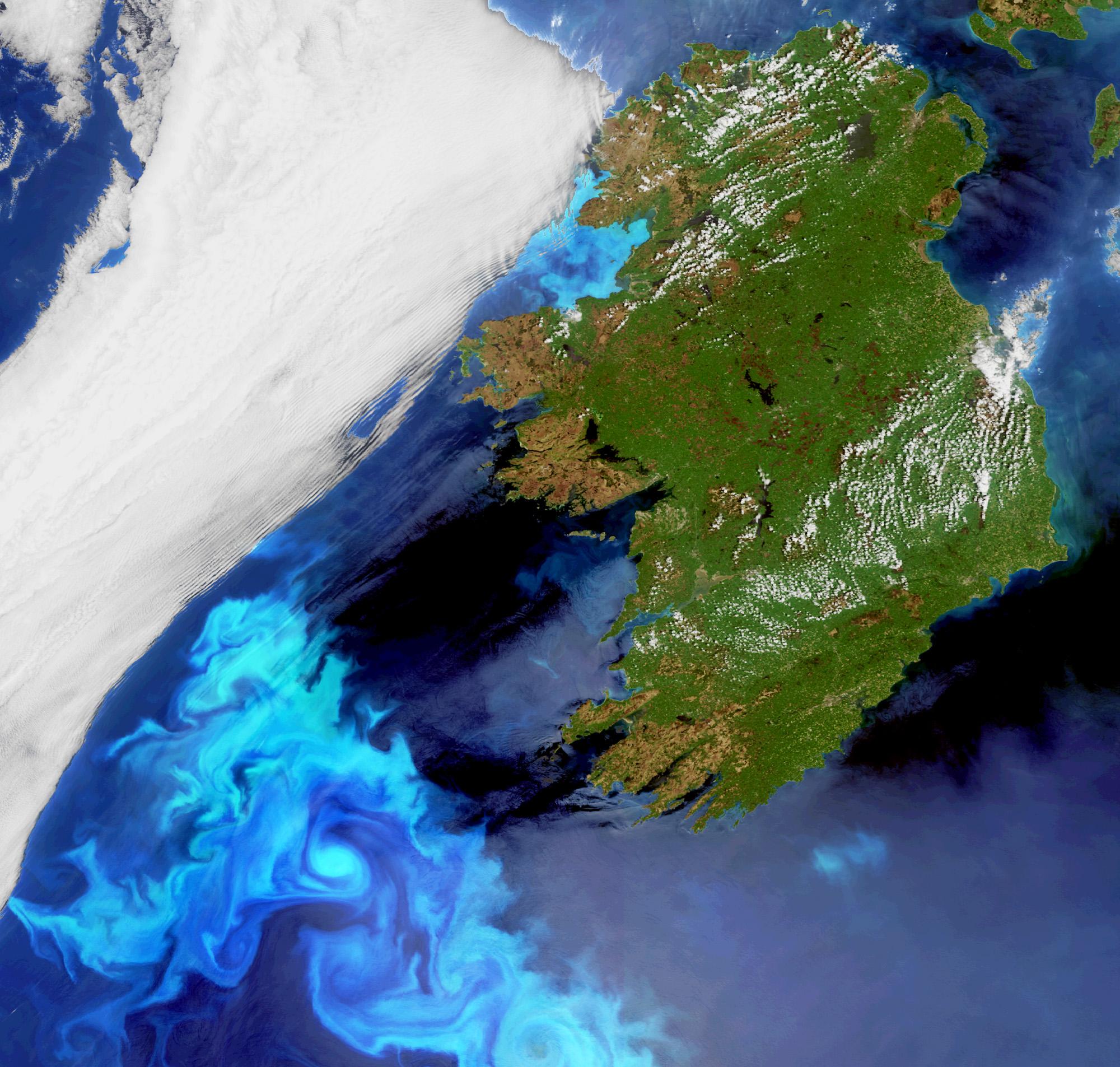 IrelandBloom_20100523_H1.jpg